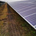 19MW PV Modules Installation Works - Нидерландия